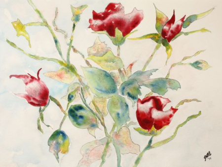 Grouping of Roses